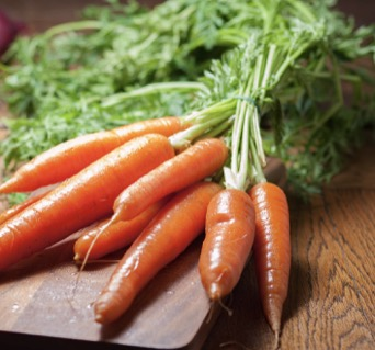 Carrot Stock Sound Effect
